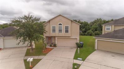 13631 Silver Charm Court, Riverview, FL 33579 - #: T3211005