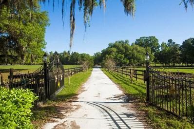 21251 Moore Road, Brooksville, FL 34604 - MLS#: U7748585