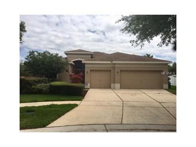 11119 Holly Cone Drive, Riverview, FL 33569 - MLS#: U7813711