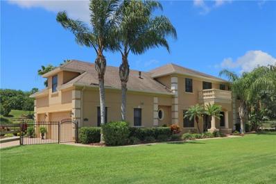 675 George Street N, Tarpon Springs, FL 34688 - MLS#: U7823939