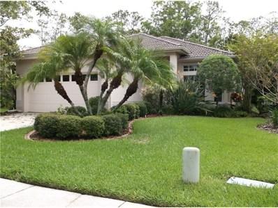1537 Riverdale Drive, Oldsmar, FL 34677 - MLS#: U7824378