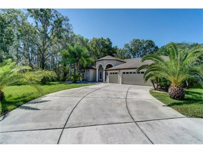 21226 Tyrell Way, Land O Lakes, FL 34638 - MLS#: U7825029