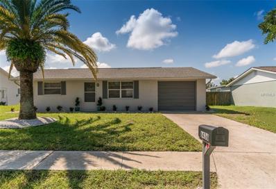 6436 Tralee Avenue, New Port Richey, FL 34653 - MLS#: U7832463