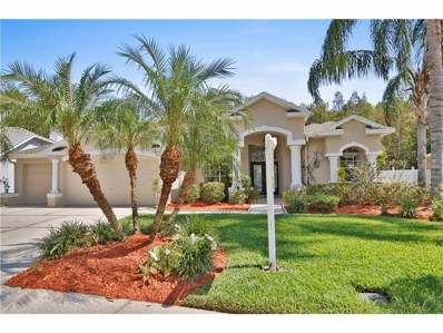 26066 Sawgrass Court, Land O Lakes, FL 34639 - MLS#: U7833320