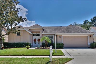2986 Spring Oak Avenue, Palm Harbor, FL 34684 - MLS#: U7833448