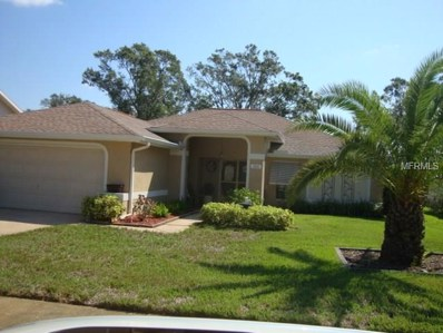 1563 Wicklow Drive, Palm Harbor, FL 34684 - MLS#: U7833449