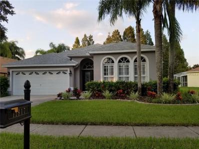 11817 Lancashire Drive, Tampa, FL 33626 - MLS#: U7836388