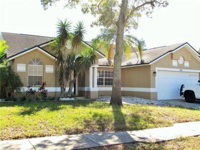 351 Wood Ibis Avenue, Tarpon Springs, FL 34689 - MLS#: U7836974