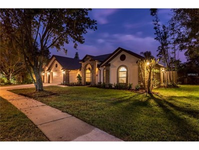 2001 Timberfall Lane, Valrico, FL 33596 - MLS#: U7838398