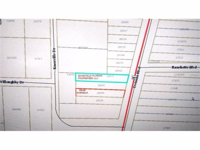 7221 Treiman Boulevard, Webster, FL 33597 - MLS#: U7838806