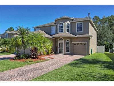 356 Ventura Drive, Oldsmar, FL 34677 - MLS#: U7839444