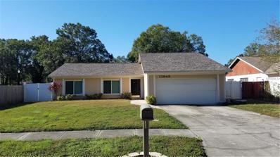 13945 Cherry Creek Drive, Tampa, FL 33618 - MLS#: U7840068