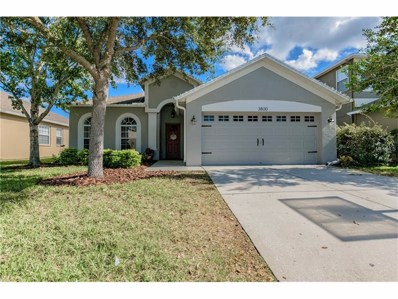 3800 Beneraid Street, Land O Lakes, FL 34638 - MLS#: U7840951
