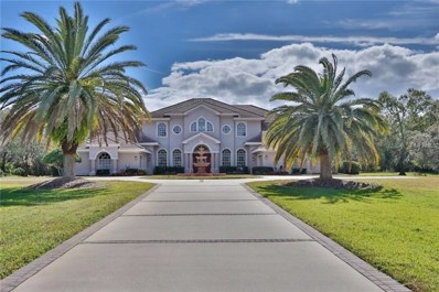 2270 N Highland Avenue, Tarpon Springs, FL 34688 - MLS#: U7842502