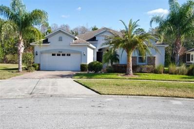 8946 Crystal Creek Court, Land O Lakes, FL 34638 - MLS#: U7843538