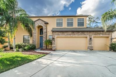 14945 Princewood Lane, Land O Lakes, FL 34638 - MLS#: U7844337