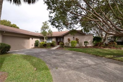 460 Holly Hill Road, Oldsmar, FL 34677 - MLS#: U7844679