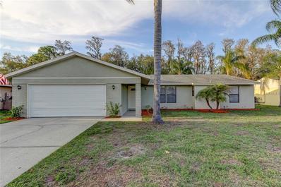 541 Lakeview Drive, Oldsmar, FL 34677 - MLS#: U7845919