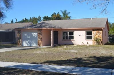 6111 Central Avenue, New Port Richey, FL 34653 - MLS#: U7846274