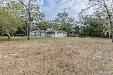 Poinsettia Avenue, Tarpon Springs, FL 34689 - MLS#: U7847438