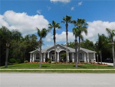 11419 Lakeview Drive, New Port Richey, FL 34654 - MLS#: U7847543