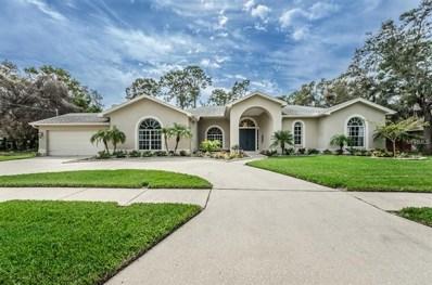 1713 Gulf Beach Boulevard, Tarpon Springs, FL 34689 - MLS#: U7849075