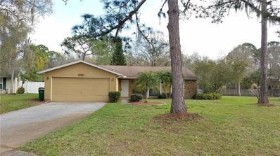 467 Cypress Lake Court, Oldsmar, FL 34677 - MLS#: U7849843