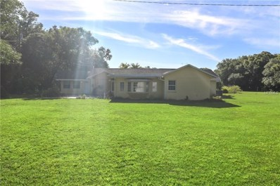 16143 Hanna Road, Lutz, FL 33549 - MLS#: U7850341