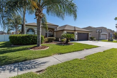 1654 Pink Guara Court, Trinity, FL 34655 - #: U7852980