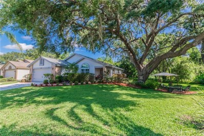 615 Deer Run N, Palm Harbor, FL 34684 - MLS#: U8002001