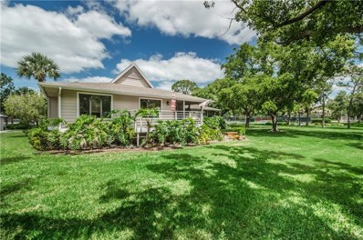 1002 Lake Avoca Court, Tarpon Springs, FL 34689 - MLS#: U8002785