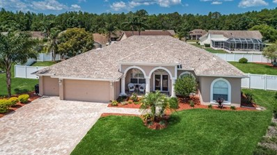 1411 Amesbury Court, New Port Richey, FL 34655 - MLS#: U8002806