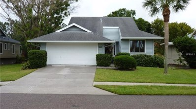 1003 Lake Avoca Drive, Tarpon Springs, FL 34689 - MLS#: U8004269