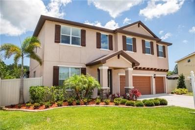 11760 Kaymak Lane, Seminole, FL 33772 - MLS#: U8004407
