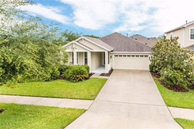 20119 Heron Crossing Drive, Tampa, FL 33647 - MLS#: U8004531
