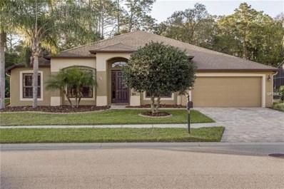 14951 Princewood Lane, Land O Lakes, FL 34638 - MLS#: U8005323