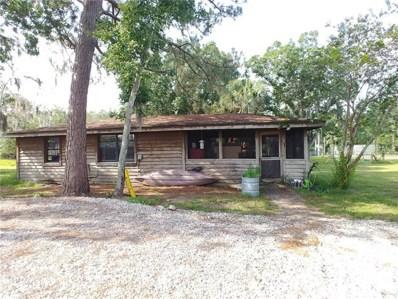 8123 Double Branch Road, Tampa, FL 33635 - MLS#: U8006047