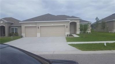 19898 Bluebird Meadow Drive N, Lutz, FL 33558 - MLS#: U8006268