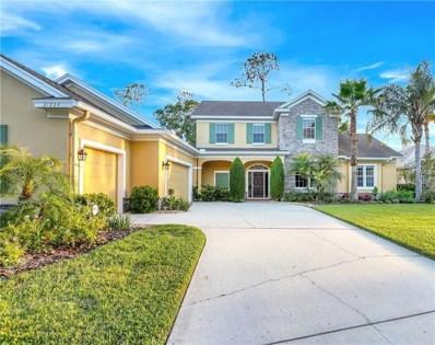21224 Sky Vista Drive, Land O Lakes, FL 34637 - MLS#: U8006326