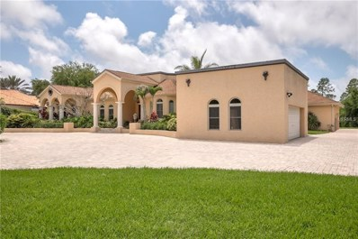 2950 Leprechaun Lane, Palm Harbor, FL 34683 - MLS#: U8006907