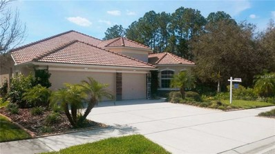 11638 Belle Haven Drive, New Port Richey, FL 34654 - MLS#: U8007389
