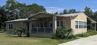 15901 Phillips Road, Odessa, FL 33556 - MLS#: U8009155