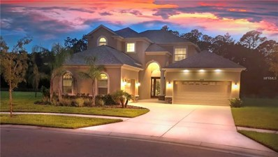 27170 Hawks Nest Circle, Wesley Chapel, FL 33544 - MLS#: U8009362