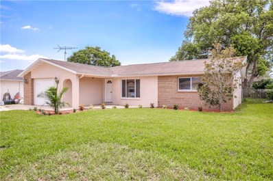 6458 Langston Avenue, New Port Richey, FL 34653 - MLS#: U8009731
