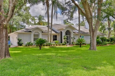500 Duque Road, Lutz, FL 33549 - MLS#: U8009747