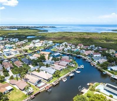 6229 Spoonbill Drive, New Port Richey, FL 34652 - MLS#: U8010821