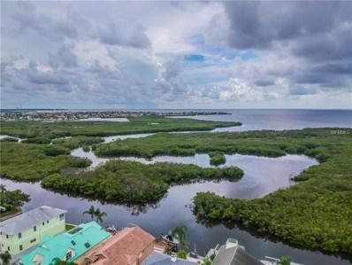 4325 Sanddollar Court, New Port Richey, FL 34652 - MLS#: U8011407