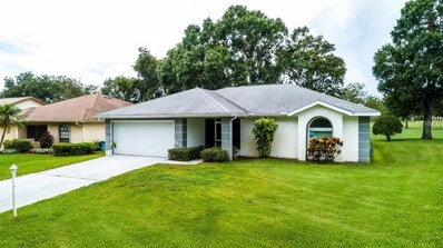1308 Gillespie Drive, Palm Harbor, FL 34684 - MLS#: U8011617