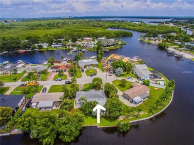 9046 Treasure Lane NE, St Petersburg, FL 33702 - MLS#: U8012482