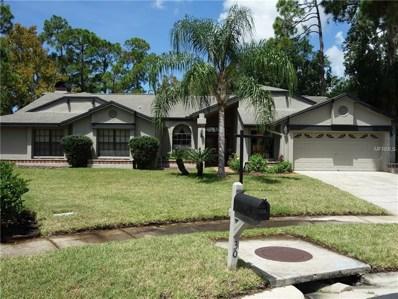 30 Windrush Court, Oldsmar, FL 34677 - MLS#: U8012970
